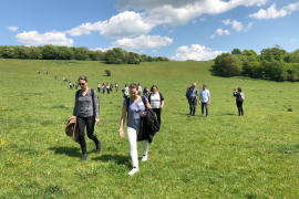 Folk i en grønn eng.